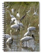 Flock Of Different Types Of Wading Birds Spiral Notebook