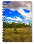Florida Everglades Spiral Notebook