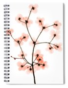 Flowering Dogwood X-ray Spiral Notebook