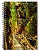 Flume Gorge Spiral Notebook
