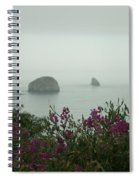 Foggy Viewpoint Spiral Notebook