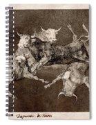Fool's Folly Spiral Notebook