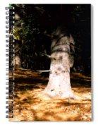 Forest Entrance Spiral Notebook