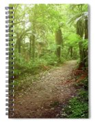 Forest Walking Trail 1 Spiral Notebook