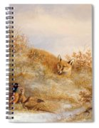 Fox And Pheasants In Winter Spiral Notebook