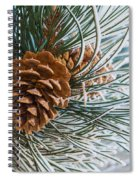 Frosty Pine Needles And Pine Cones Spiral Notebook