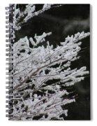 Frozen Branches Spiral Notebook