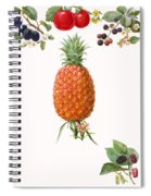Fruits Spiral Notebook