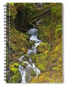 Streaming Through Rainforest Rubble Spiral Notebook