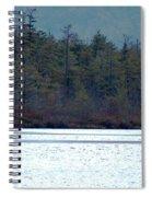 Geese On Labrador Pond Spiral Notebook