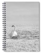 Geese Surrounded By Hoarfrost Spiral Notebook