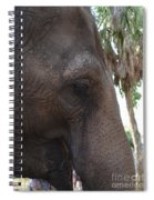 Gentle Giant Spiral Notebook