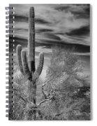 Giant Saguaro Spiral Notebook