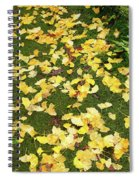 Ginkgo Biloba Leaves Spiral Notebook