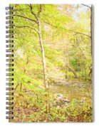 Glimpse Of A Stream In Autumn Spiral Notebook