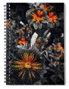 Golden Hearts Spiral Notebook