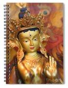 Golden Sculpture Spiral Notebook