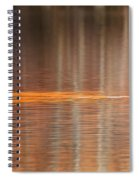 Golden Trail 2015 Spiral Notebook