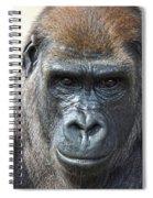 Gorilla 1 Spiral Notebook