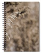 Grass Blade Spiral Notebook