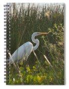 Great Egret At Coba Village Spiral Notebook
