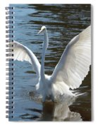 Great Egret Wings Spiral Notebook