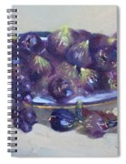 Greek Figs Spiral Notebook