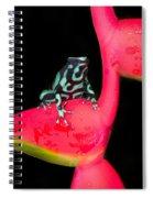 Green And Black Poison Dart Frog Spiral Notebook