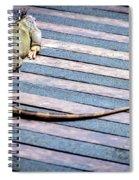 Green Iguana Spiral Notebook