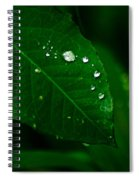Green Leaf With Raindrops Spiral Notebook