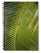 Green Palm Leaf Spiral Notebook