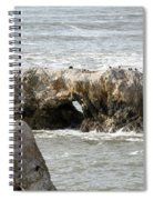 Grey Water At Window Rock Spiral Notebook