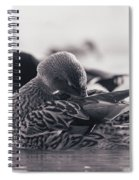 Grooming Spiral Notebook