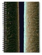 Hair Of A Black Bear, Sem Spiral Notebook