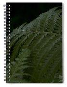 Hapuu Pulu Hawaiian Tree Fern  Spiral Notebook