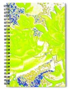 Harmony 31 Spiral Notebook