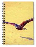 Harris Hawk Spiral Notebook