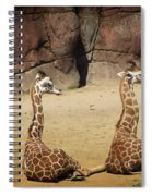 Having A Giraffe Spiral Notebook