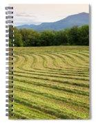 Hayfield Landscape Spiral Notebook
