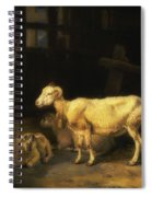 Heath Ewe And Lambs Spiral Notebook