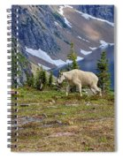 Hidden Landscape In Widescape Spiral Notebook