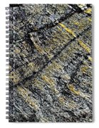 History Of Earth 5 Spiral Notebook