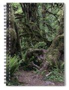 Hoh Rain Forest 3389 Spiral Notebook