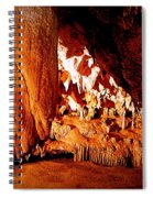 Hometown Series - Luray Caverns Spiral Notebook