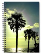Honeymoon Island Sunset Spiral Notebook