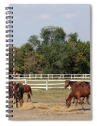 Horses Eat Hay On Ranch Spiral Notebook