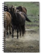 Horses South Icelandic Plain 1584 Spiral Notebook