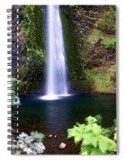 Horsetail Falls Spiral Notebook
