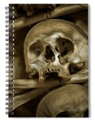 Human Skull And Bones Spiral Notebook