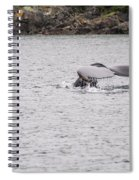 Humpback Whales 3 Spiral Notebook